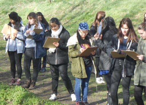 A Level Geography Trip to Epping Forest